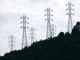Crows knocked out power to 100,000 in 3 states