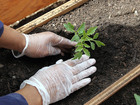 6 ways to do your part on Earth Day
