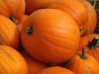 7th annual Great Pumpkin Feast