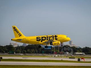 Parts of Spirit plane found in local yards