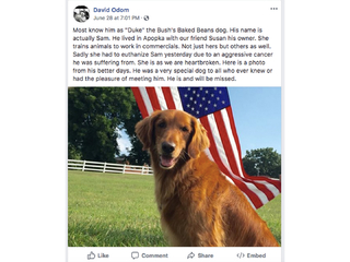 Dog from Bush's Baked Beans commercials dies